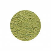Green Earth Light Pigment