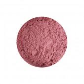 Rose Madder Genuine Pigment