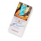 Sennelier 12 Iridescent Oil Pastels